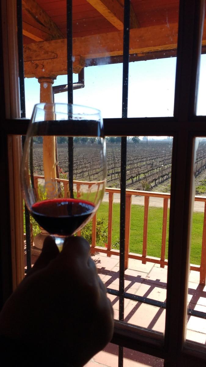 Vinícola MontGras: programa faça o seu vinho (CHL).
