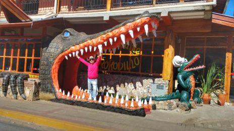 krokodillo